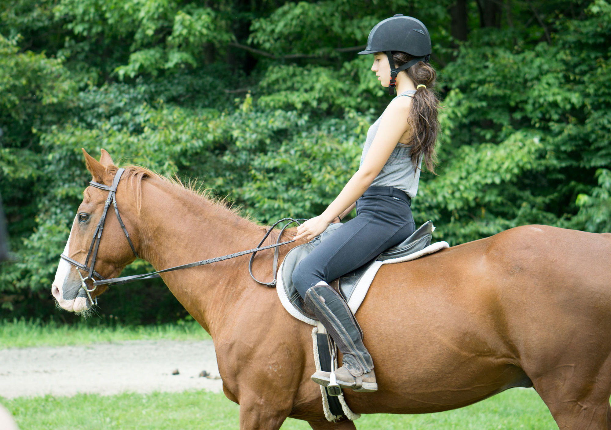 Horse Riding Instructor Jobs Abroad In America Camp Leaders
